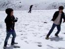 Parque de los Nevados (PNNN)