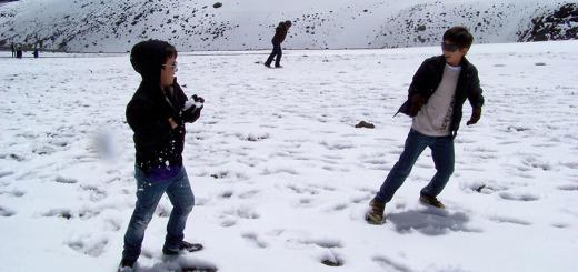 Parque de los Nevados. caldas