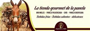Guapanela & Coffee